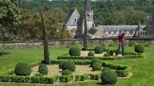 Jardinage Poitiers