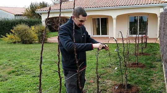 Entretien de jardin Poitiers